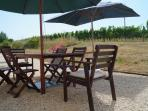 Shaded meals on the rear terrace with views over our own vineyards