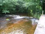 One of the rivers nearby (off property)