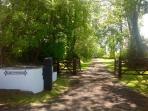 Plas's tree lined drive