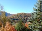 View from back deck in the fall