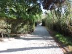 The path to the beach I