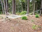 Swaying between the redwoods, a hammock awaits long leisurely naps.