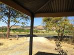 View of gum trees and vineyards, from Cottage's shady verandah.