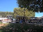 Le petit train...un incontournable de Montpellier...