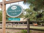 Look for our teal Tanglewood Farm B&B sign at the front entrance