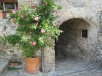 The archway from the passageway with the climbing rose and its fragrance from its flowers...
