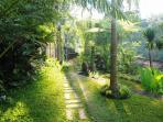 garden, charming paths