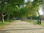 Loulé Municipal Park - a place for sport, to play whit children and relaxing