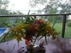 A pearl grey Winter misty morning on the Dining Deck, temp a warm 20degrees Celsius