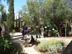 Ibiza wedding venues - gazebo