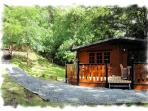 No other cabins close by affords plenty of privacy