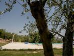 particolare piscina foto- Futura Tittaferrante