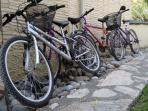 There are 4 bikes to use, but you can hire more in town.
