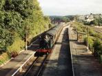 Goodrington steam railway station. A short walk away with trains to kinngswear (for Dartmouth).