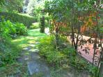 Garden near atio