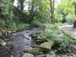 The River Holme at Holmfirth. You can walk alongside in the centre of town and feed the ducks