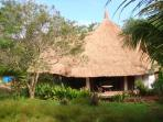 Spectacular grass (cogon) roof blends with the environment.