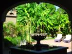 Arched shot of our 'Fountain of Life'