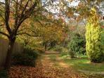 Autumn Glory at Hebe - Early May