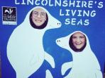 From late Autumn, visit our local seal sanctuary, Donna Nook - nature at it's most fascinating