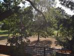 Garden looking over Golf Course