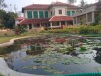 A scenic view of our homestay