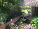 Enter AlaAla via a bridge over a lovely lily pond.