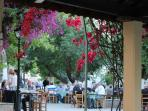 The charming village square with its kafeneion is a lovely spot to relax and have a drink.