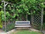 Take time out on our bench under the shade of our grape vines while watching the kids
