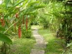 The path down to the pool at Pete's Comfy Manuel Antonio Cottage