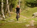 Possibilità di giri in bicicletta lungo il lago o in mountain bike sui sentieri