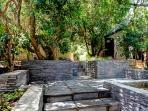 milkwood garden