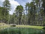 Laghetto a 10 minuti a piedi dalla casa. Internamente al parco nazionale riserva poverella.