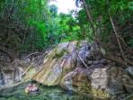 Macal River Waterfall - Plunge Pool