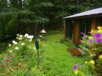 At Cooper Lake 'Romantic' Cedar Log Cottage - Natural beauty and Quiet Moments