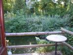 standing in kitchen doorway looking over wildlife pond