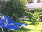 Agamemnon Suite - Garden