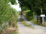 Bason Bridge farmhouse rental - The lane to the house