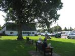 Horning's village green