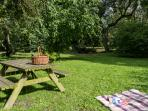 …an old orchard with fruit trees, picnic table...