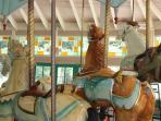ride the famous Carousel in City Park and experience the magic