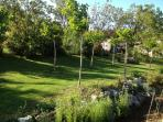 Extensive private garden set to lawns, flower beds, vegetables and orchard.