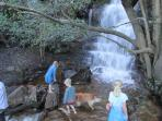 Waterfall and tadpole pool, a 20 minute hike from the top of our estate