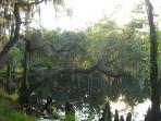 Shingle Creek, Kissimmee