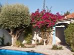 Holiday Villa Casa Hermosa