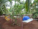 Catch up on reading or just laze on the hammocks.Children love staying in the tents.
