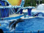 Sea world
