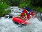 We can coordinate white water rafting at best prices