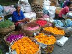 Colors of the market