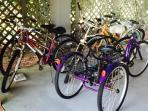 4 adult bikes and  3-wheel adult bike with large basket;boogie boards, beach chairs
